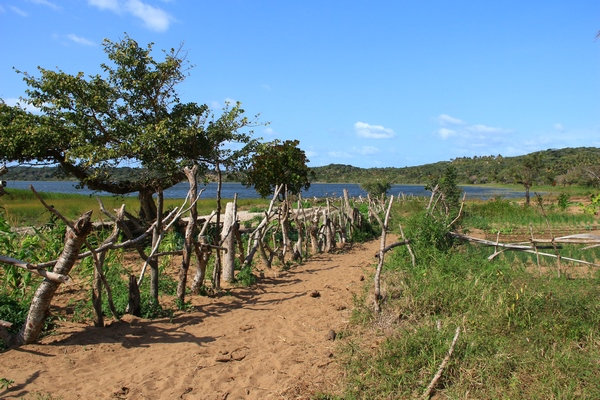 Path-to-the-lake-nature-activities-Mozambique