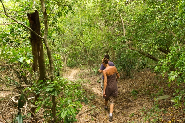 walking-in-the-forest-Mozambique