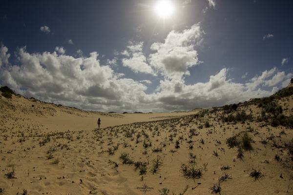 Walking-in-the-wild-dunes-nature-activities-Mozambique